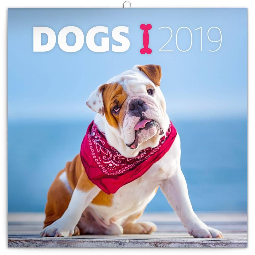 Dogs Kalender 2019 Presco