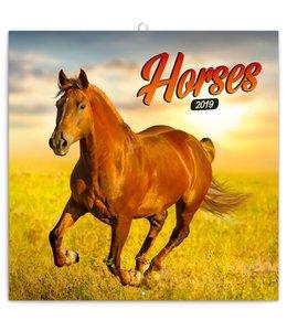 Presco Horses Kalender 2019