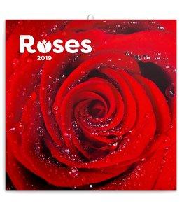 Presco Roses Kalender 2019