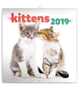 Presco Kittens Kalender 2019