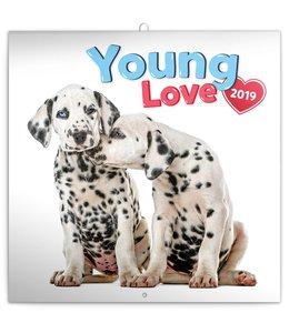 Presco Young Love Kalender 2019
