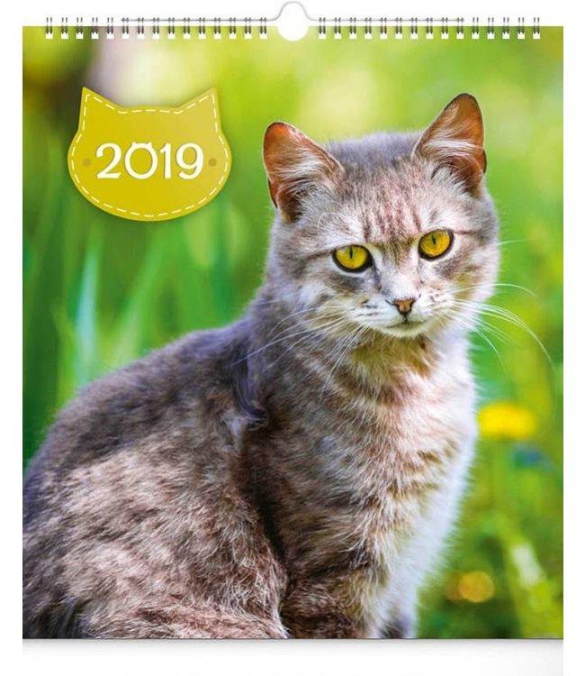 Presco Cats Kalender 2019