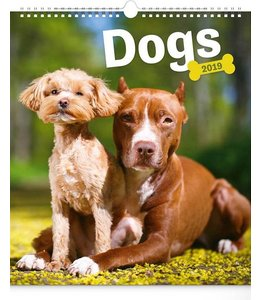 Presco Dogs Kalender 2019