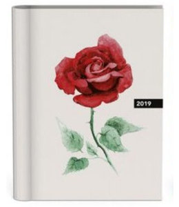 Lannoo Rose Desk Agenda 2019