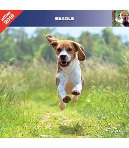Affixe Editions Beagle Kalender 2019