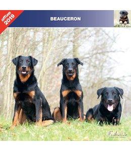 Affixe Editions Beauceron Kalender 2019