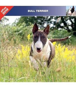 Affixe Editions Bull Terrier Kalender 2019