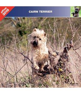 Affixe Editions Cairn Terrier Kalender 2019