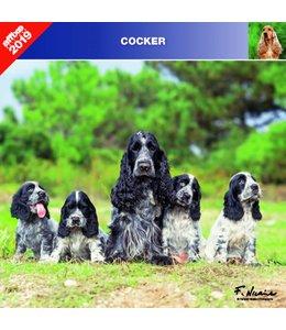 Affixe Editions Engelse Cocker Spaniel Kalender 2019