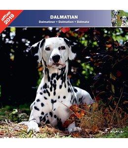 Affixe Editions Dalmatier Kalender 2019