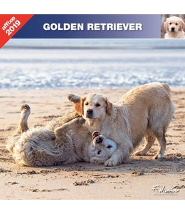 Affixe Editions Golden Retriever Kalender 2019