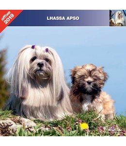Affixe Editions Lhasa Apso Kalender 2019