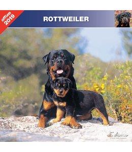 Affixe Editions Rottweiler Kalender 2019