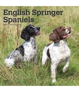 Browntrout Engelse Springer Spaniel Kalender 2019