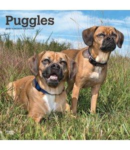 Browntrout Puggle Kalender 2019