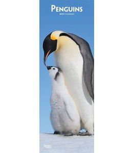 Browntrout Pinguin Kalender Slimline 2019