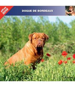 Affixe Editions Bordeaux Dog Kalender 2019