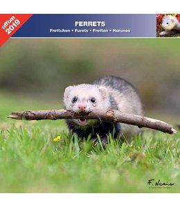 Affixe Editions Fretten Kalender 2019