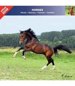 Affixe Editions Paarden Kalender 2019