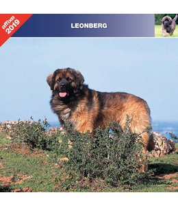 Affixe Editions Leonberger Kalender 2019