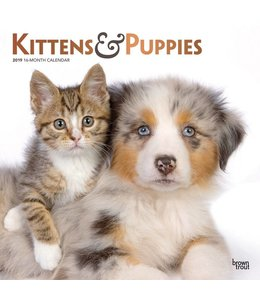 Browntrout Kittens en Puppies Kalender 2019