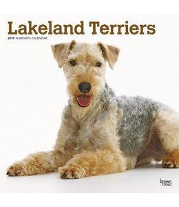 Browntrout Lakeland Terrier Kalender 2019