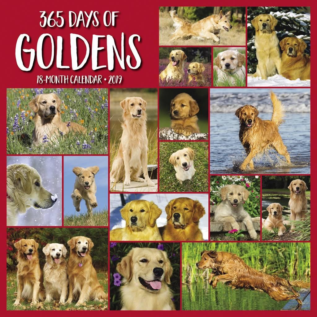 365 Days of Goldens Kalender 2019