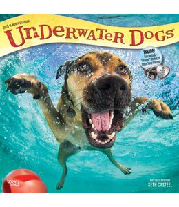 Browntrout Underwater Dogs Kalender 2019