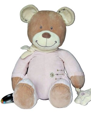 Grote Teddybeer Knuffelbeer 50cm