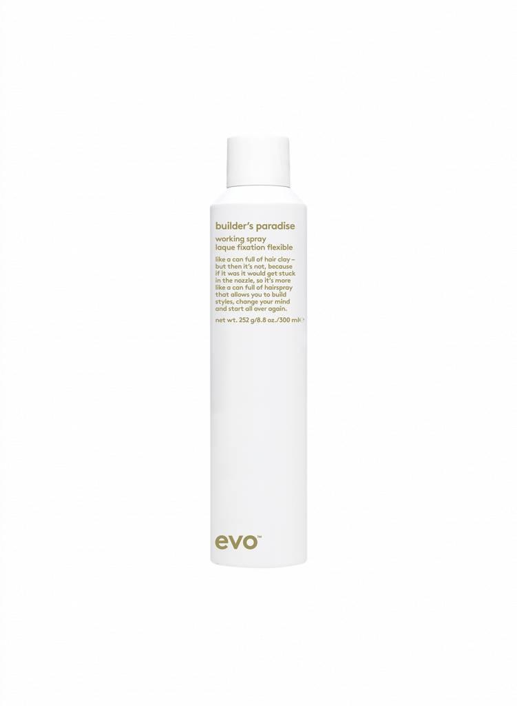EVO EVO® LAQUE FIXATION FLEXIBLE 1X300ML
