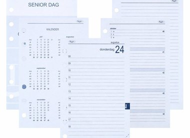 Senior organiser year re-fill