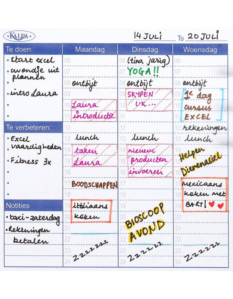 Kalpa Motivate planner-Dolfijn-A5-losbladige