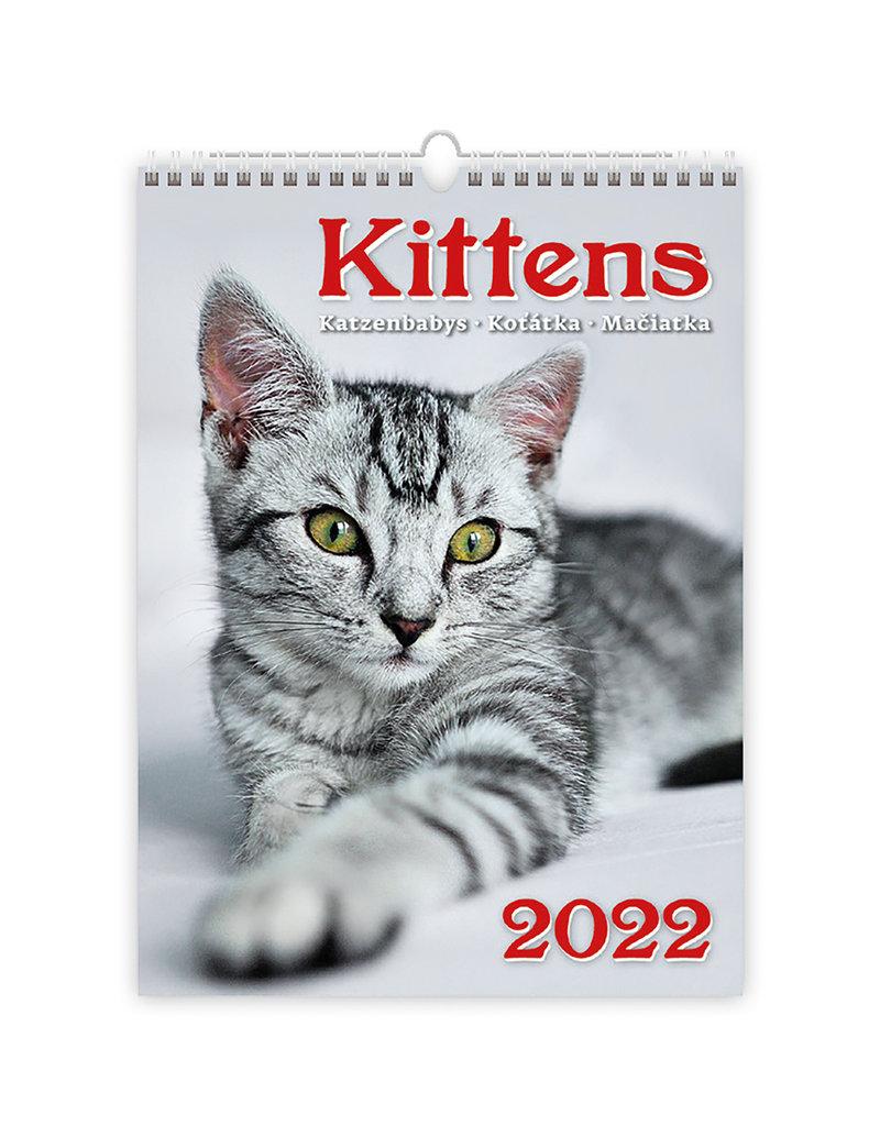 Helma C170-22 Katjes 2022 Kalpa Wandkalender