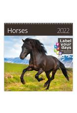 Helma Kalpa kalender 30 x 30 cm Paarden