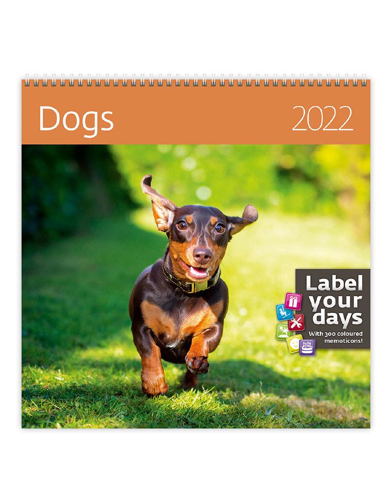 Helma Kalpa Kalender 30 x 30 cm Honden