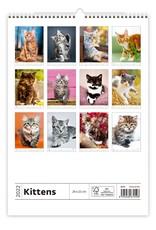 Helma C170-22 Kalpa Wall Calendar 2022 Kittens Calendar 24 x 33 cm