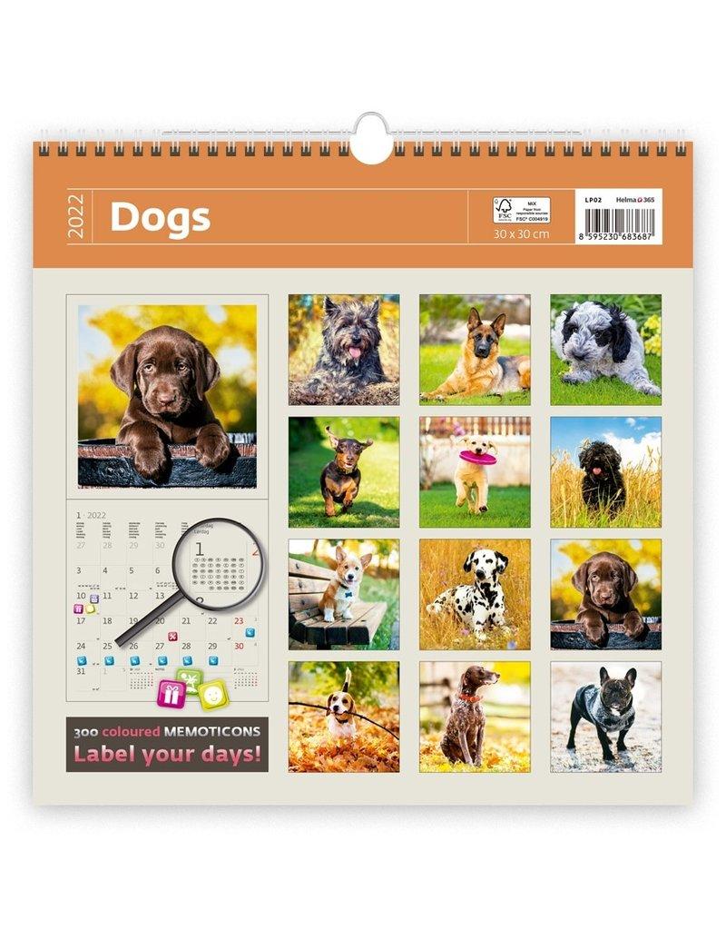 Helma Kalpa Calendar 30 x 30 cm Dogs
