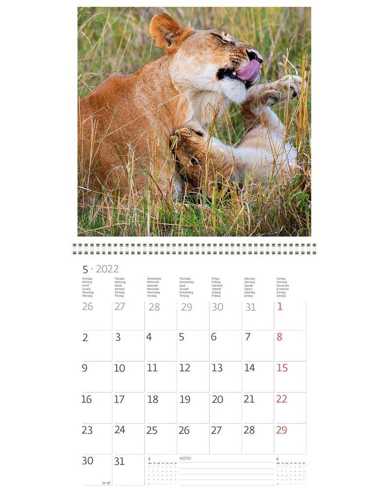 Helma Kalpa calendar 30 x 30 cm Animal Friends