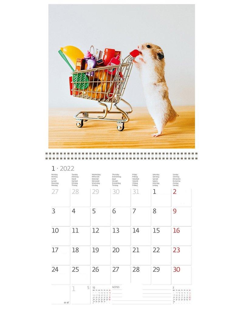 Helma Kalpa calendar 30 x 30 cm Little Fun
