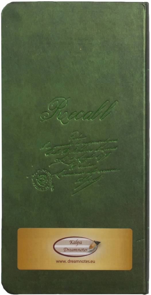 Dreamnotes D1022-2 Dreamnotes notebook Manuscript 17,5 x 9 cm Green