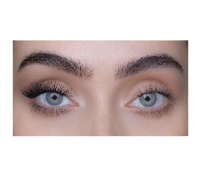 Sweed Lashes Cluster Flair Lashes