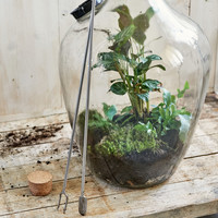 Terrarium fork with patter