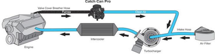 Flashlube catch can pro