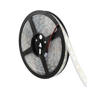 LED STRIP 4,8W 60LEDS/M WIT 5M
