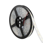 LED STRIP 4,8W 60LEDS/M WARM-WIT 5M