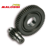 "Secundaire Overbrenging Malossi 15/55 | Piaggio 4T 12"""