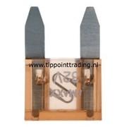 Mini steekzekeringen 10 mm 5 A (25 stuks)