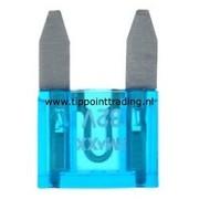 Mini steekzekeringen 10 mm 15 A (25 stuks)