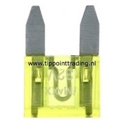 Mini steekzekeringen 10 mm 20 A (25 stuks)