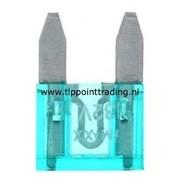Mini steekzekeringen 10 mm 30 A (25 stuks)